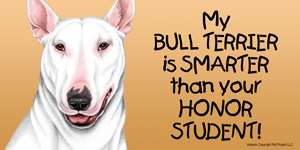Bull Terrier Smarter Honor Student Car Magnet 8x4 dog