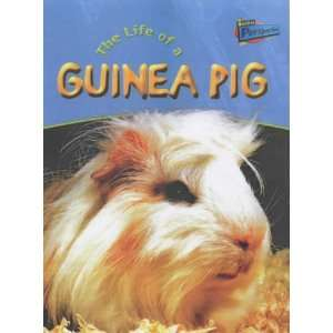 Raintree Perspectives: Life Cycles   the Life of a Guinea