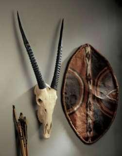Gemsbok Antelope Horn African Sculptural Wall Trophy Big Game Mount