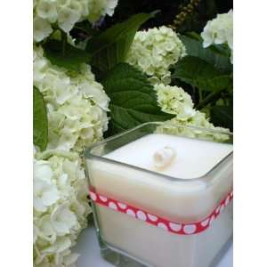 Blossom Via Vanilla Aromatherapy 12oz 100% Soy Candle: Home & Kitchen