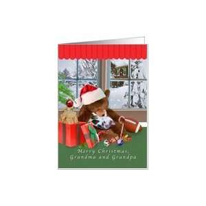 Christmas, Grandparents, Sleeping Cat, Teddy Bear Card