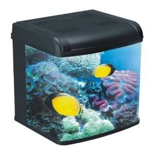 Amazoncom pet supplies 2015 personal blog for Saltwater fish tank kit