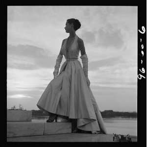 Fashion model posing,evening gown,steps,Tidal Basin