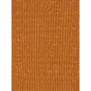 Fabricut FbC 3515111 Prototype   Burnt Orange Fabric: Arts