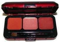 GREAT PRICE* MAC Passionately Red/Viva Glam   3 Warm Lips