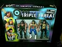 WWE,Jakks,Wrestling Figures,Box Set,Foley,Mankind,Cactus Jack,Dude