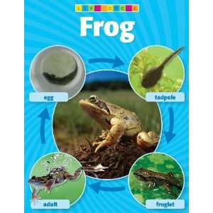 Scholastic TF2453 Frog Life Cycle Photo Chart: Teachers