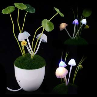 Romantic LED Mushroom Lamp Night Light Cute Lovely Gift