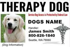 Custom ID Card / Badge for Working Dogs and Handler Therapy Dog #3