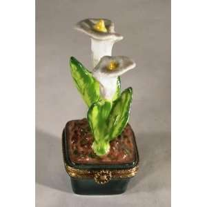 Potted Calla Lilies French Porcelain Limoges Box
