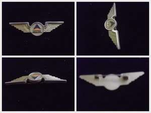 DELTA AIRLINES JUNIOR WINGS Pin Badge