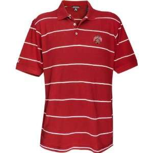 Maryland Terrapins Classic Pique Striped Polo Sports