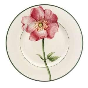 & Boch Flora Wild Rose Salad Plates, Set of 6