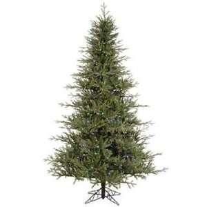 Christmas Tree   Castlerock Frasier Fir   A102487LED