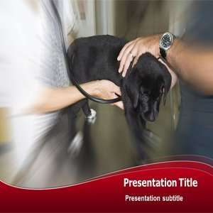 Veterinary Surgeon Powerpoint Template   Veterinary Surgeon Powerpoint