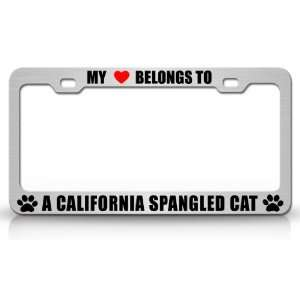 MY HEART BELONGS TO A CALIFORNIA SPANGLED Cat Pet Auto License Plate