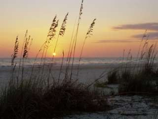Sunset, Gulf Coast, Longboat Key, Anna Maria Island, Beach, Florida